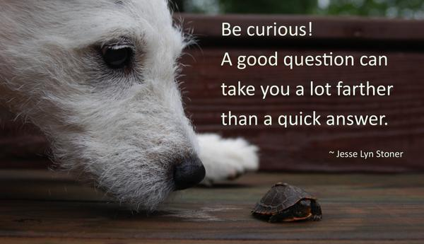 Answering quote Be curious! A good question can take you a lot farther than a quick answer.