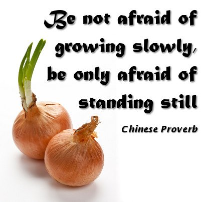 Be not afraid of growing slowly, be only afraid of standing still. - Chinese Proverbs