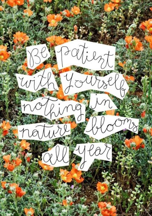 Natural phenomena quote Be patient with yourself, nothing in nature blooms all year.