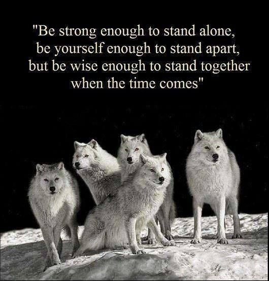 Wisely quote Be strong enough to stand alone, be yourself enough to stand apart, but be wise
