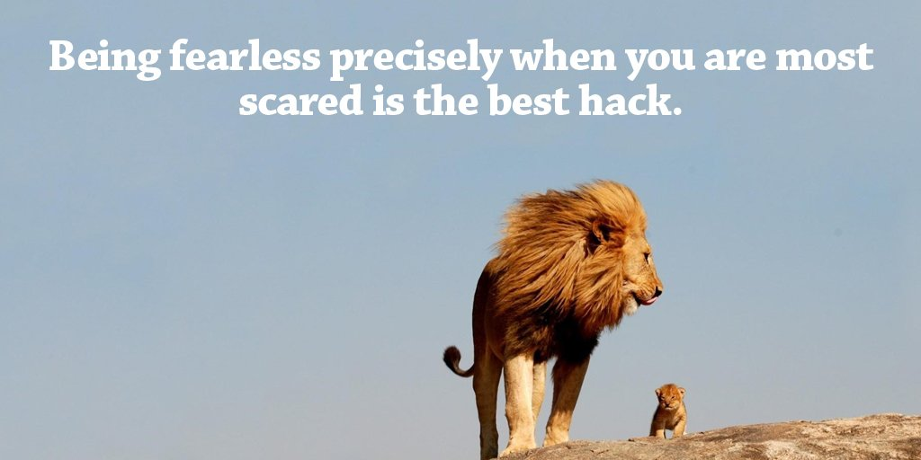 Car quote Being fearless precisely when you are most scared is the best hack.