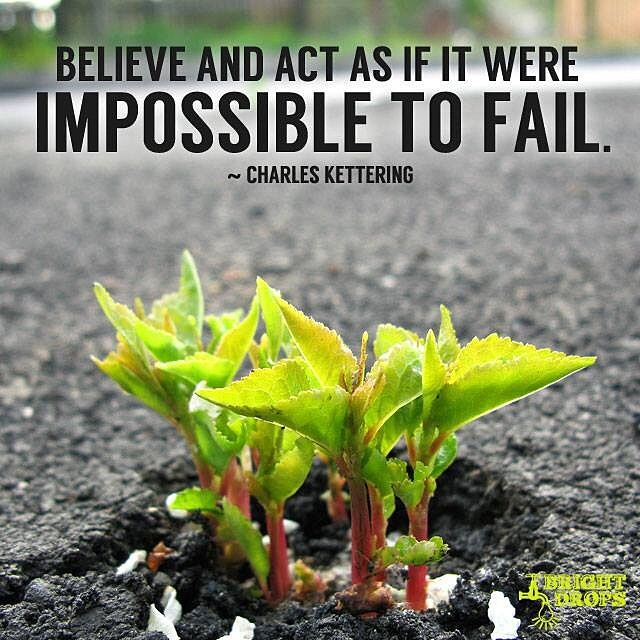 Charles Franklin Kettering quote Believe and act as if it were impossible to fail