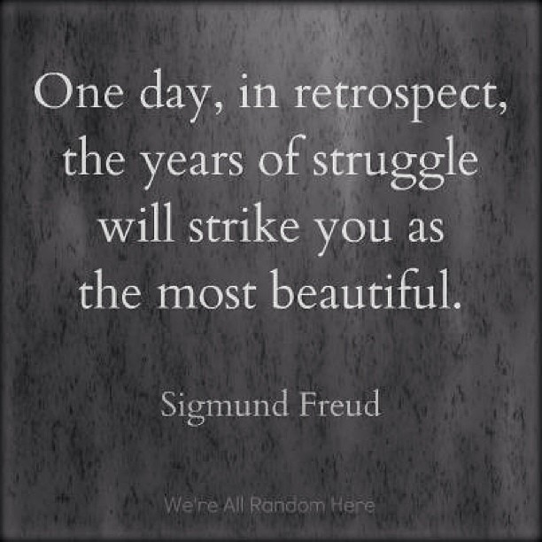 One day, in retrospect, the years of struggle will strike you as the most beautiful. - Sigmund Freud