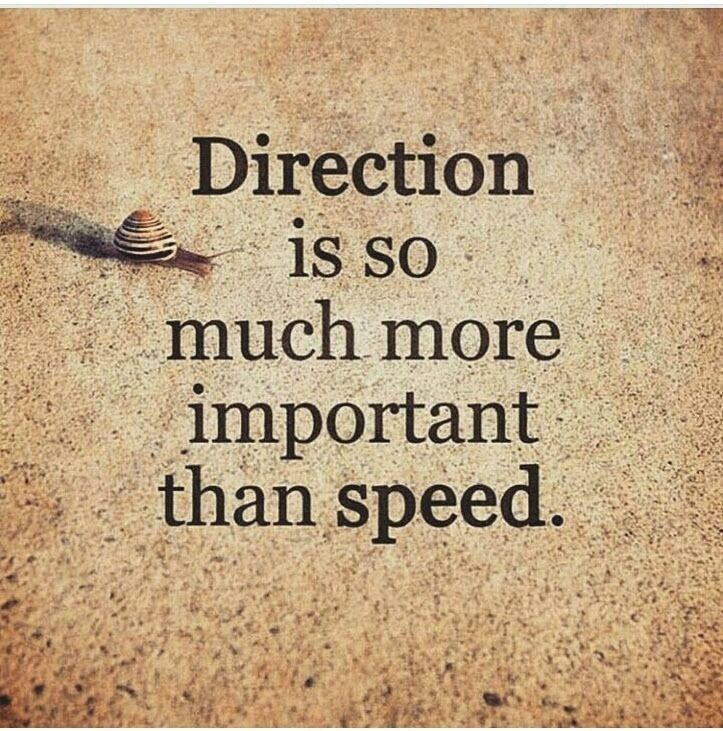 Important jobs quote Direction is so much more important than speed.