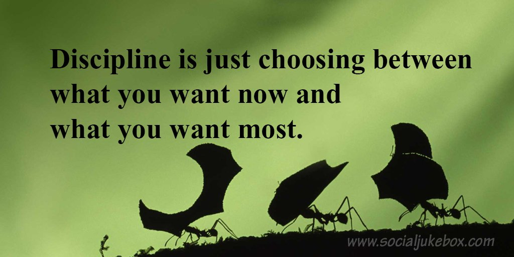 Future quote Discipline is just choosing between what you want now and what you want most.