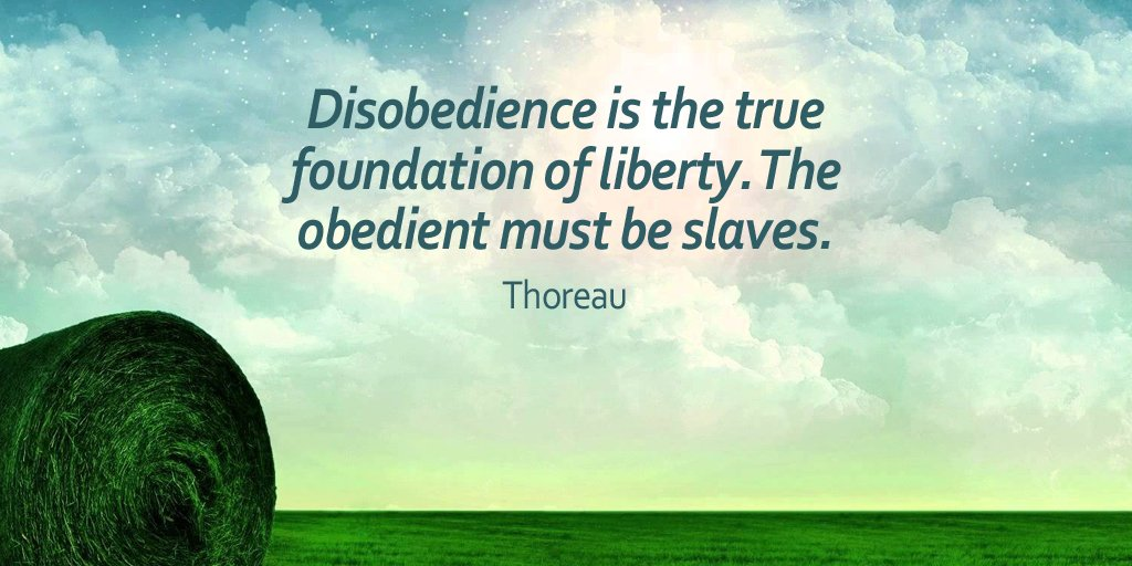 Slave quote Disobedience is the true foundation of liberty. The obedient must be slaves.