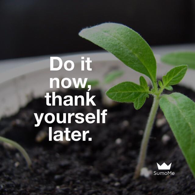Thank you quote Do it now, thanks yourself later.