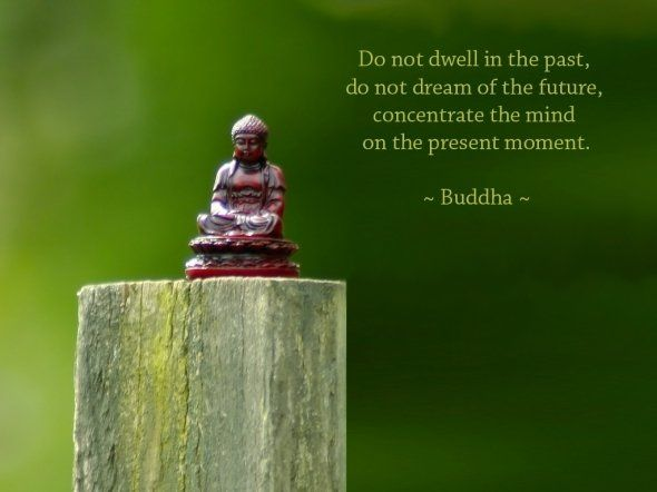 Concentration quote Do not dwell in the past, do not dream of the future, concentrate the mind on th