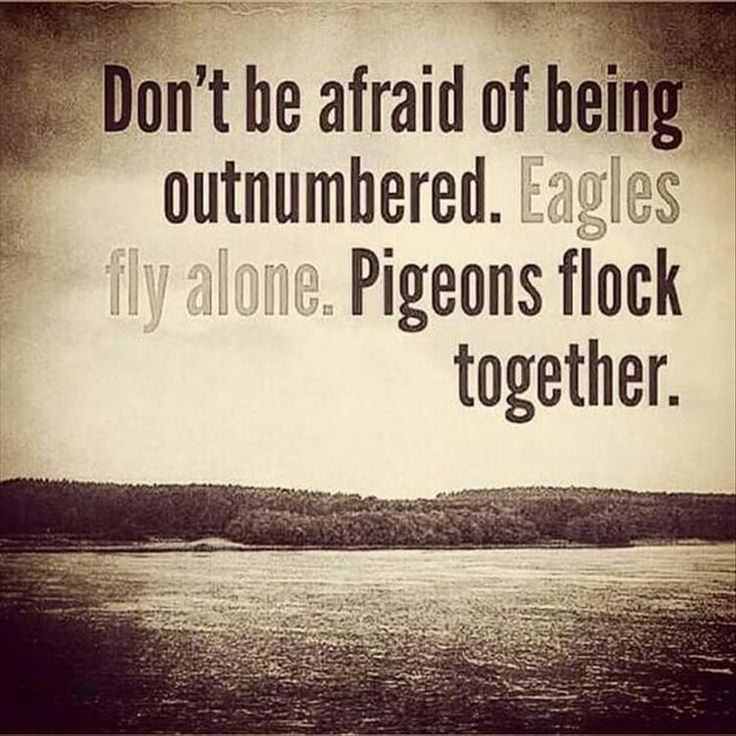 Afraid of death quote Don't be afraid of being outnumbered. Eagles fly alone. Pigeons flock together.