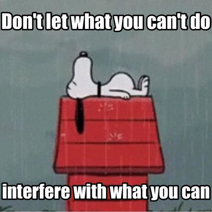 Interfere quote Don't let what you can't do interfere with what you can.