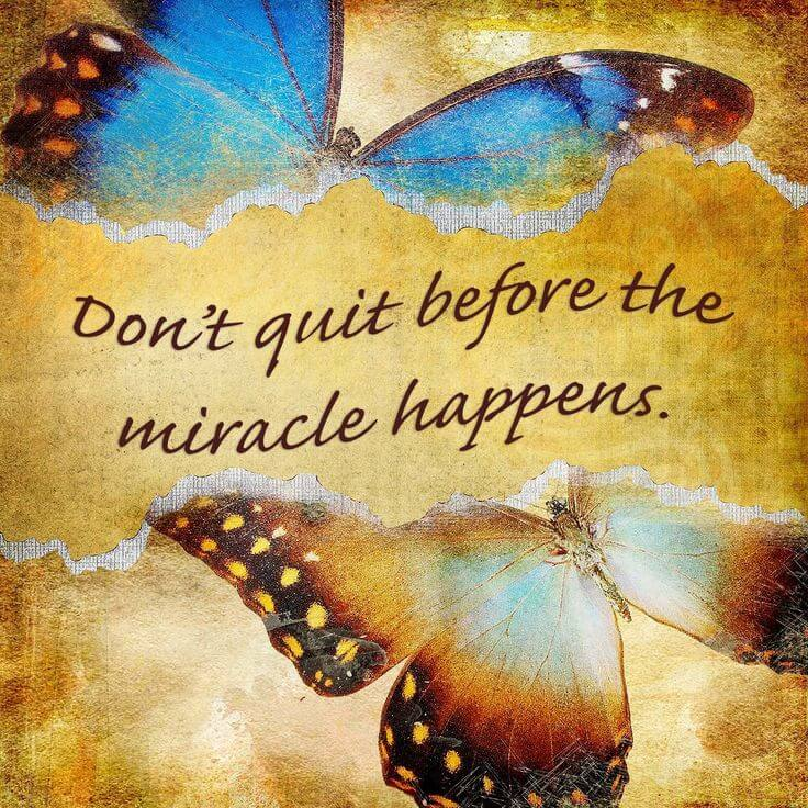 Wait quote Don't quit before the miracle happens.