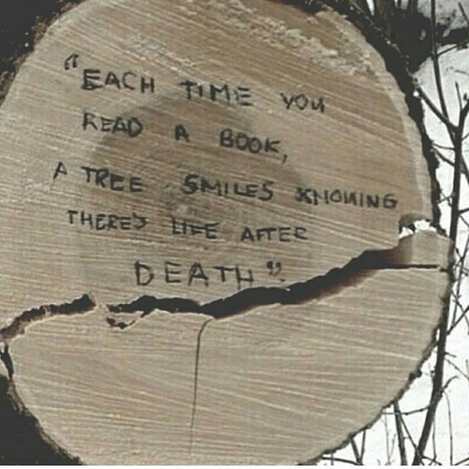 Natural phenomena quote Each time you read a book, a tree smiles knowing there's life after death.