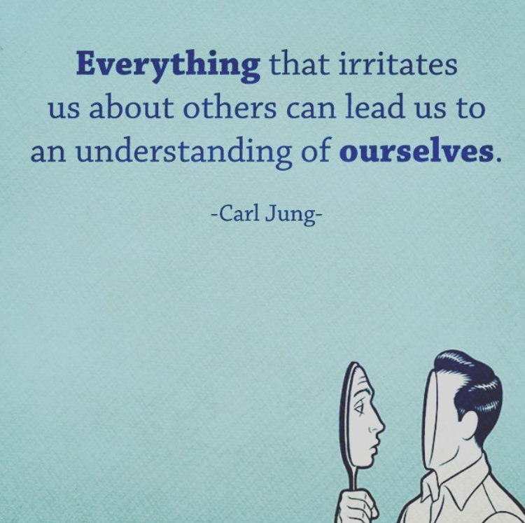 Understand quote Everything that irritates us about others can lead us to an understanding of our