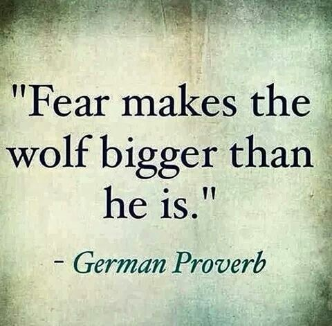 Do not fear quote Fear makes the wolf bigger than he is.