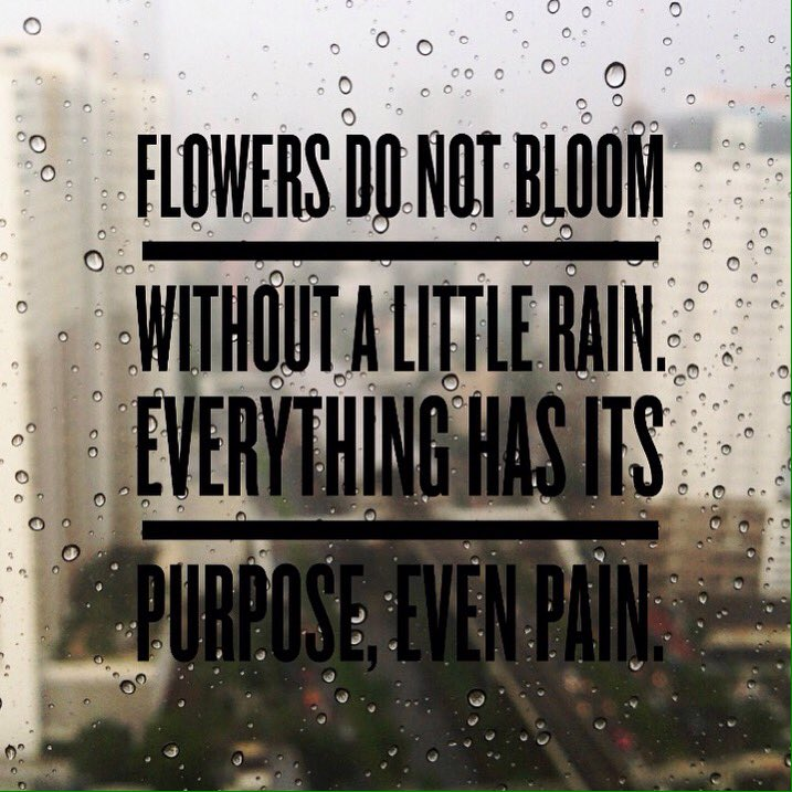 Consequences quote Flowers do not bloom without a little rain. Everything has its purpose, even pai