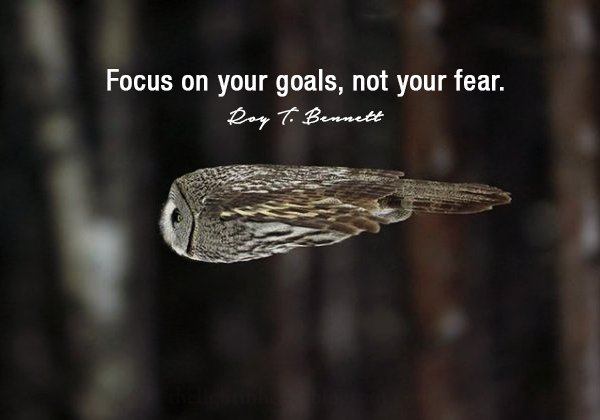 Do not fear quote Focus on your goals, not your fear.