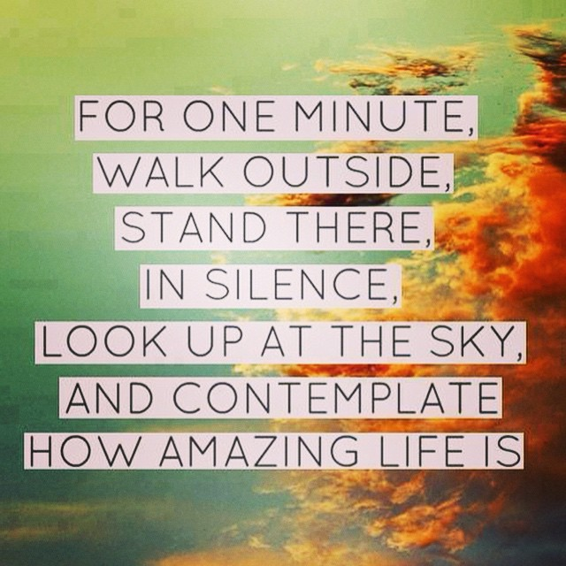 Amazing Life Quotes: Plate Pictures Quotes