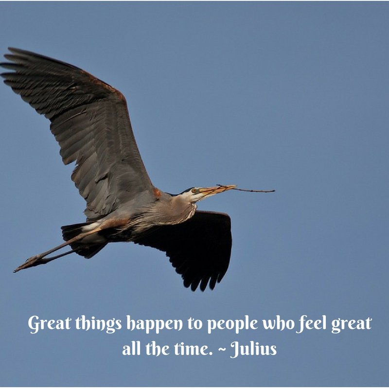 Great things happen to people who feel great all the time. - Julius Caesar
