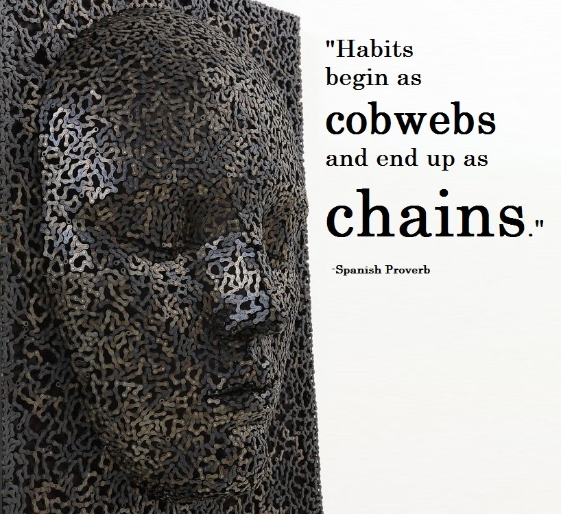 Web quote Habits begin as cobwebs and end up as chains.
