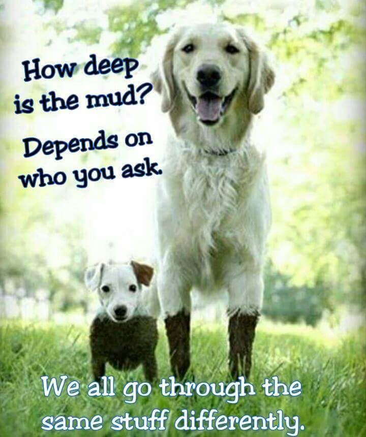 Depends quote How deep is the mud? Depends on who you ask. We all go through the same stuff di