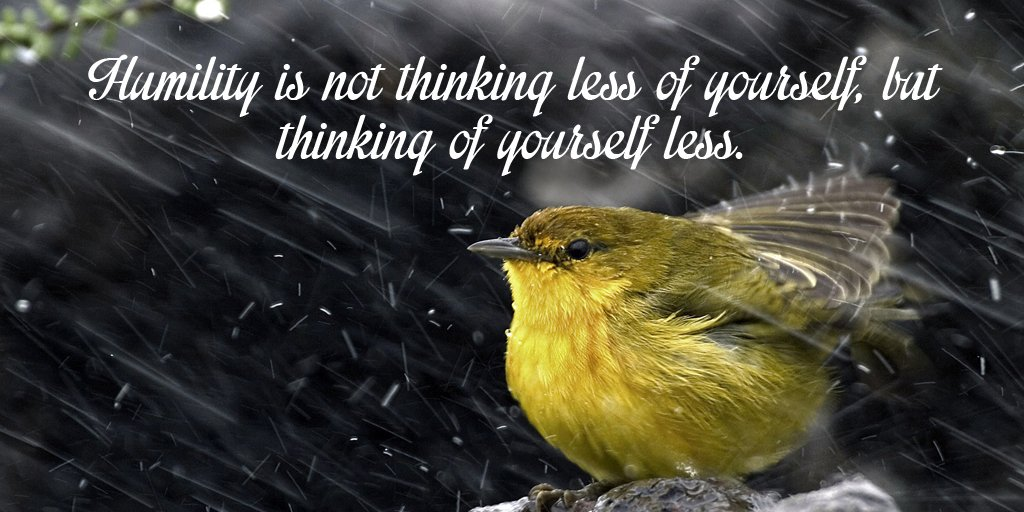 Humility is not thinking less of yourself, but thinking of yourself less. - Sayings