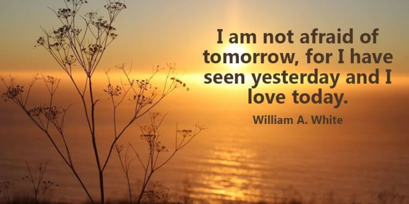 Picture quote by William Allen White about motivational