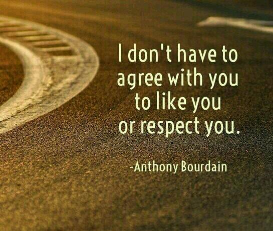 Anthony Bourdain quote I don't have to agree with you to like you or respect you.