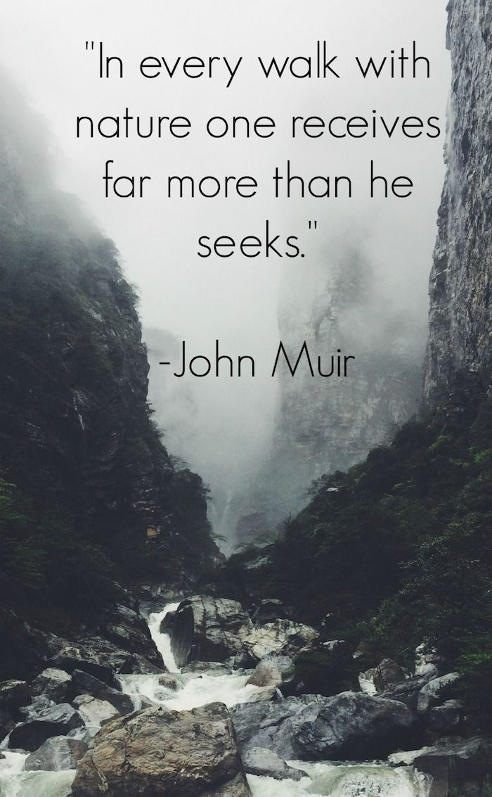 I every walk with nature one receives far more than he seeks. - John Muir