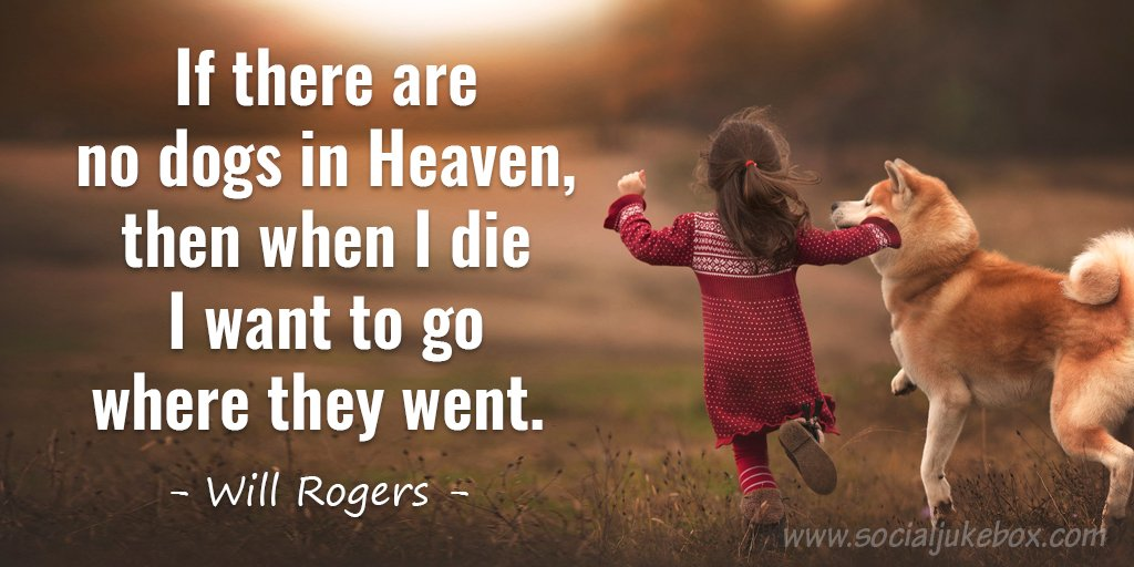 If there are no dogs in Heaven, then when I die I want to go where they went. - Will Rogers