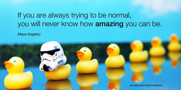 If you are always trying to be normal, you will never know how amazing you can be. - Maya Angelou