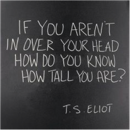 If you aren't in over your head, how do you know how tall you are? - T. S. Eliot