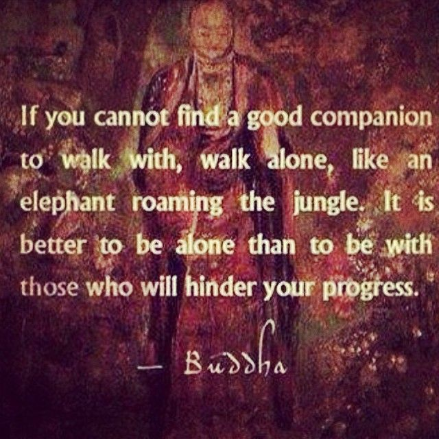 Interpersonal relationship quote If you cannot find a good companion to walk with, walk alone, like an elephant r