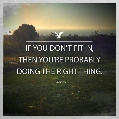 Fitness quote If you don't fit in, then you're probably doing the right thing.
