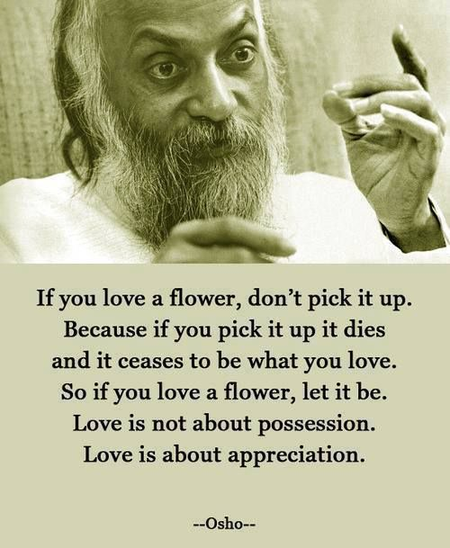 Dying quote If you love a flower, don't pick it up. Because if you pick it up it dies and it