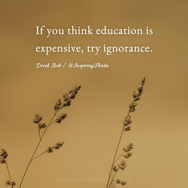 If ignorance is bliss quote If you think education is expensive, try ignorance.