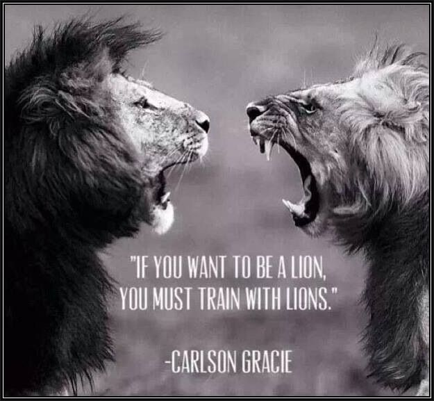 Train quote If you want to be a lion, you must train with lions.
