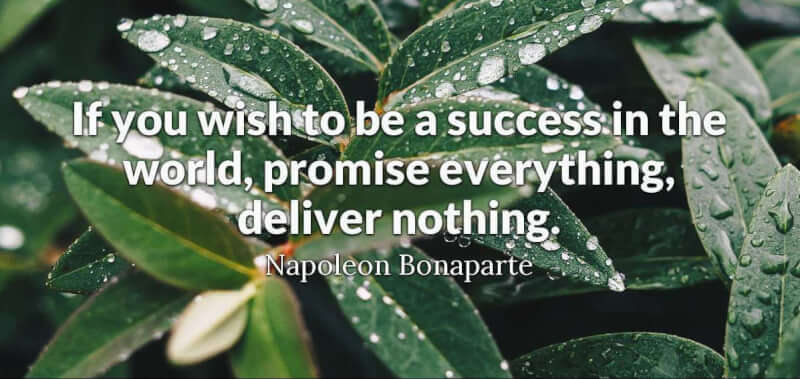 Napoleon Bonaparte quote If you wish to be a success in the world, promise everything, deliver nothing.