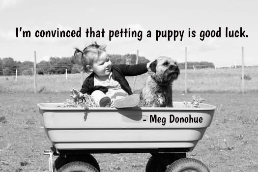 Puppies quote image