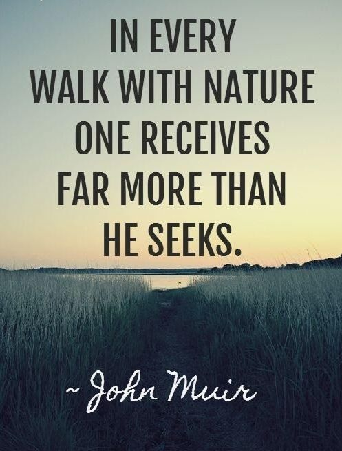 Nature quote In every walk with the nature one receives far more than he seeks.