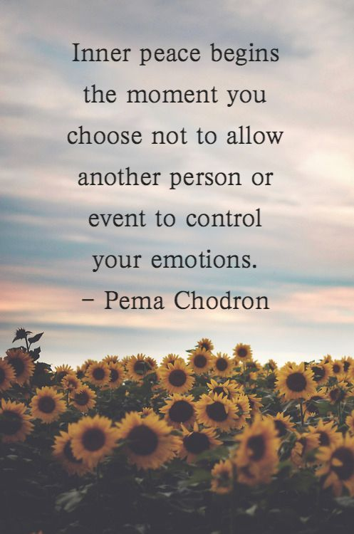 Emotions quote Inner peace begins the moment you choose not to allow another person or event to