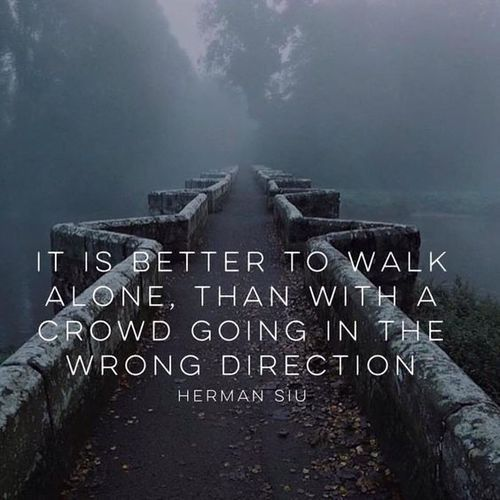 Career path quote It is better to walk alone, than with a crowd going in the wrong direction.