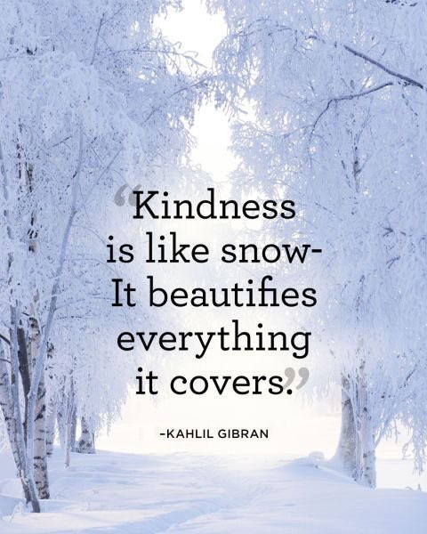 Kindness generosity quote Kindness is like snow - it beautifies everything it covers.