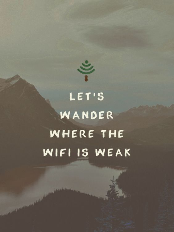 Wander quote Lets wander where the wifi is weak.