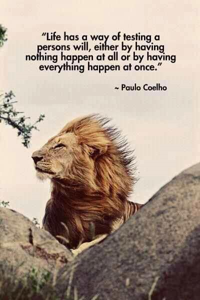 Life has a way of testing a person's will, either by having nothing happen at all or by having everything happen at once. - Paulo Coelho