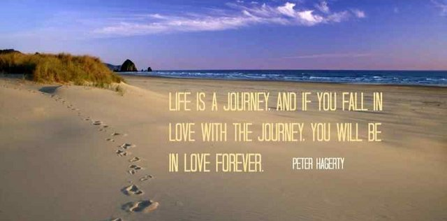 Forever quote Life is a journey, and if you fall in love with the journey, you will be in love