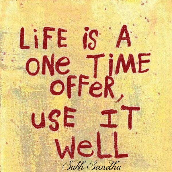 Offer quote Life is a one-time offer, use it well.
