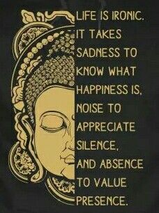 Happiness sadness quote Life is ironic. It takes sadness to know what happiness is, noise to appreciate