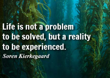 Experienced quote Life is not a problem to be solved, but a reality to be experienced.