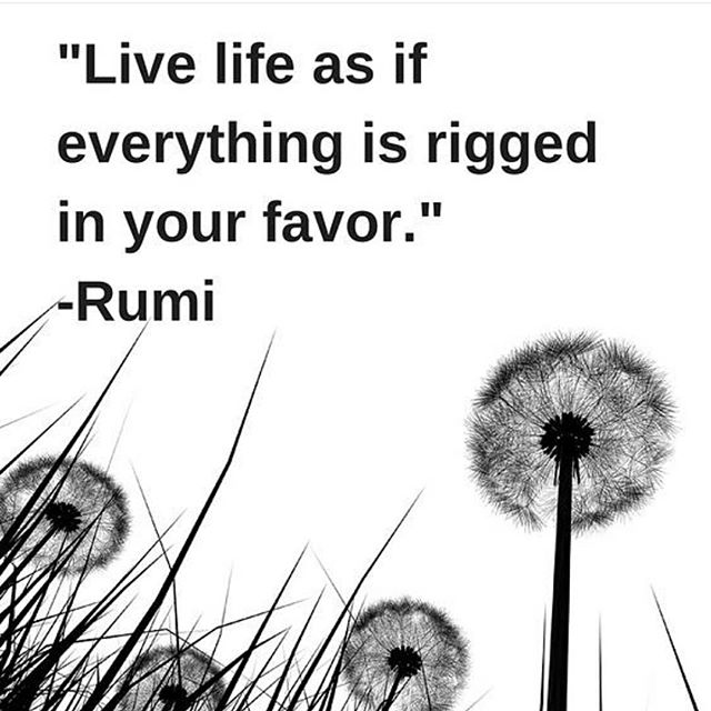Favor quote Live life as if everything is rigged in your favor.