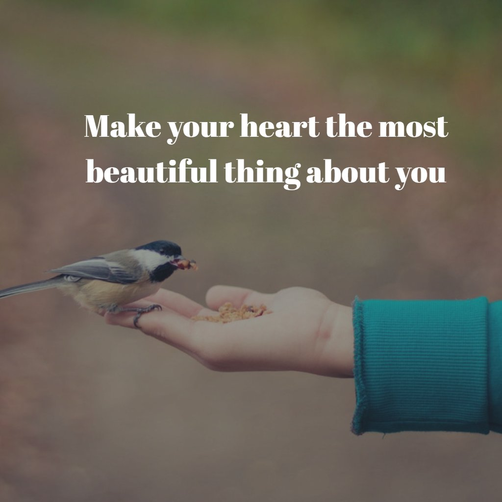 Make your heart the most beautiful thing about you. - Sayings
